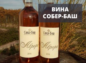 красивый вид вина собер-баш открытые бутылки на фоне травы