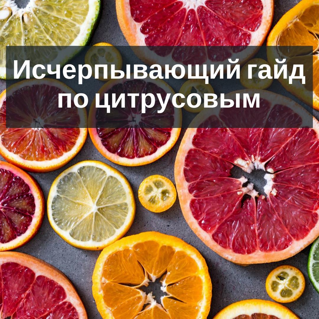 гид гайд по цитрусовым фруктам для коктейлей и напитков, апельсин, кумкват, лимон, лайм, разновидности, грейпфрут