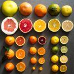 20180117-citrus-vicky-wasik-7-1500×1500
