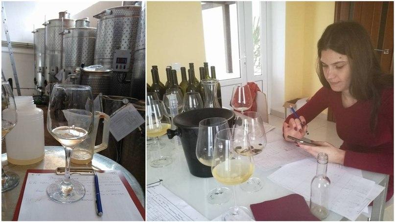 дегустация вина декантация пробуем вина мастер-класс сомелье бокалы винные