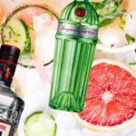 джин сравнение описание джинов лучшие джины мира алкоголь бутылки коллаж на фоне фруктов